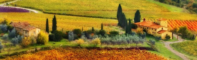 Autunno-Tuscany crop