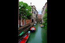 Acquolina Venice