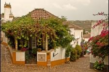 Casa S Thiago do Castelo