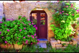 Courtyard Door