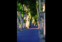 La Route de Provence