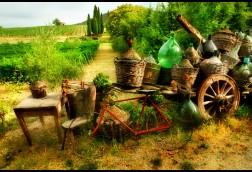 Old Tuscany