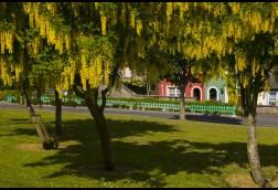 Park Kinsale