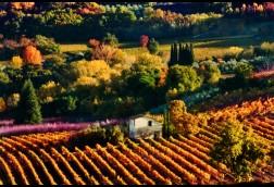 Valle di Montepulciano