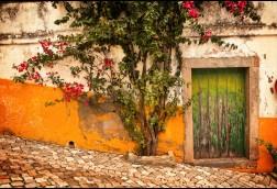 Hillside Portugal