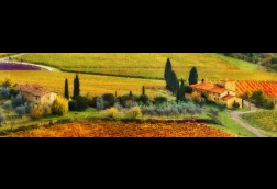 Autunno-Tuscany crop